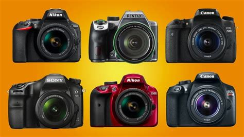 recommended film cameras for beginners the best dslr cameras for beginners