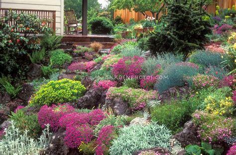 hill landscaping ideas rock garden in flower in spring on slope hillside house