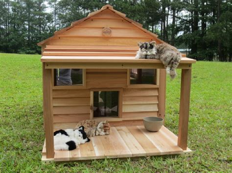Cat Cottages cat cottage 36 x 37 interior ledges escape hatch