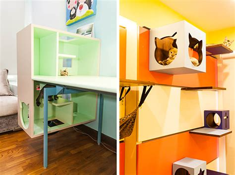 cat friendly home design beautiful cat friendly home in singapore from j en c
