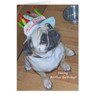 pug with birthday hat puggle gifts t shirts posters other gift ideas zazzle