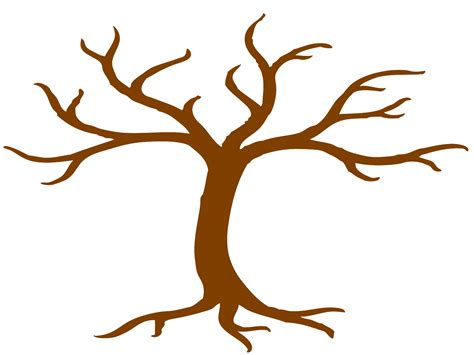 tree template without leaves tree without leaves template clipart best