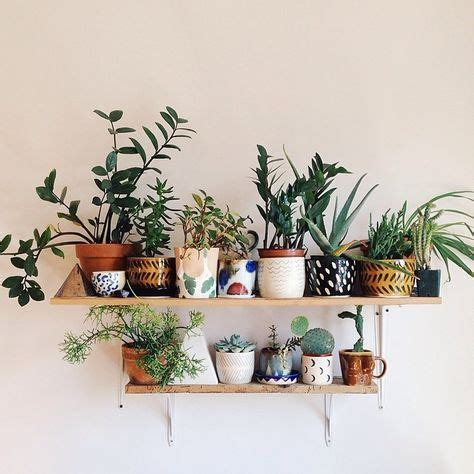 best 25 plant shelves ideas on plant wall