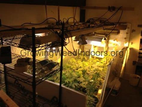 grow room light timers planning your indoor marijuana grow room