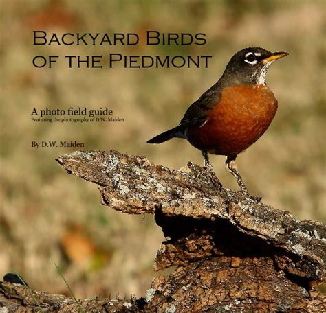 backyard birds of virginia backyard birdsof the piedmont by d w maiden reference