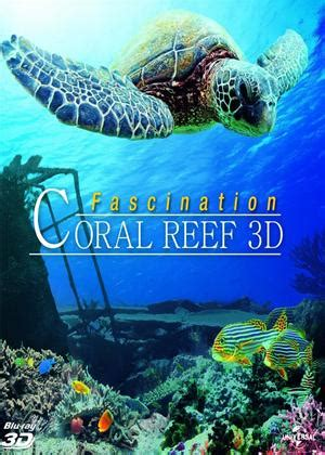 coral reef adventure 2003 for rent on dvd coral reef 3d 2012 film cinemaparadiso co uk