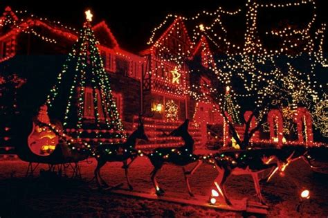 free christmas lights screensaver software informer