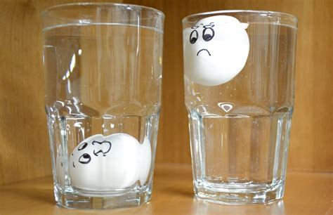 Egg Sinks In Water by Simple Trick To Tell If An Egg Has Bad