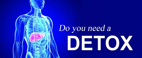 Signs You Need Kidney Detox by 10 Signs Your Needs A Detox Rocky Point Times Newspaper