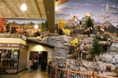 Cabela S Cabin Kits by Cabela S Grand Openings Aug 15 18 Win A Starter Fishing