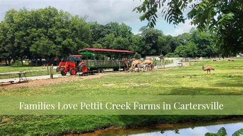 families love pettit creek farms in cartersville ga