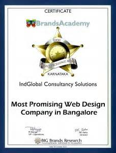 web design company in btm layout best website design company in bangalore 171 indglobal