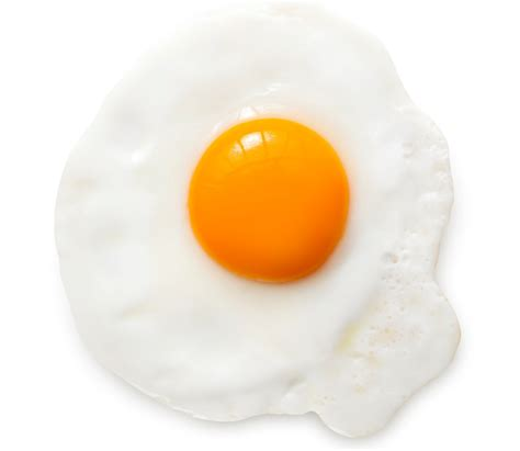 Yolk Egg watchfit egg yolk or egg white