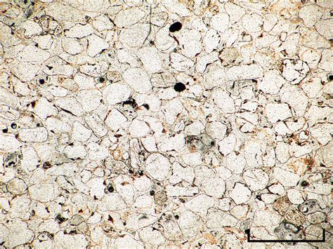 Hematite In Thin Section by Cambridge Rocks Minerals Fossils