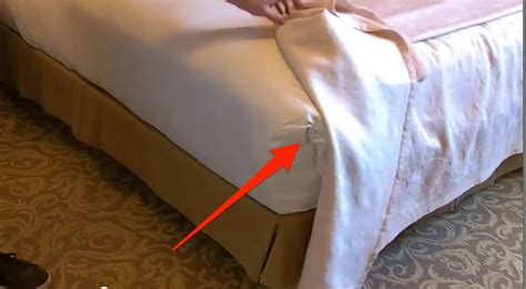 How To Check A For Bed Bugs by Photos You Should Always Check Your Hotel Room For Bed