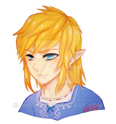 zelda link with black hair loz link s long hair by onisuu on deviantart