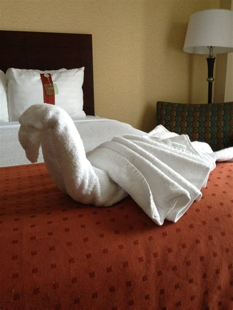 Towel Origami Animals - swan towel folding crafts