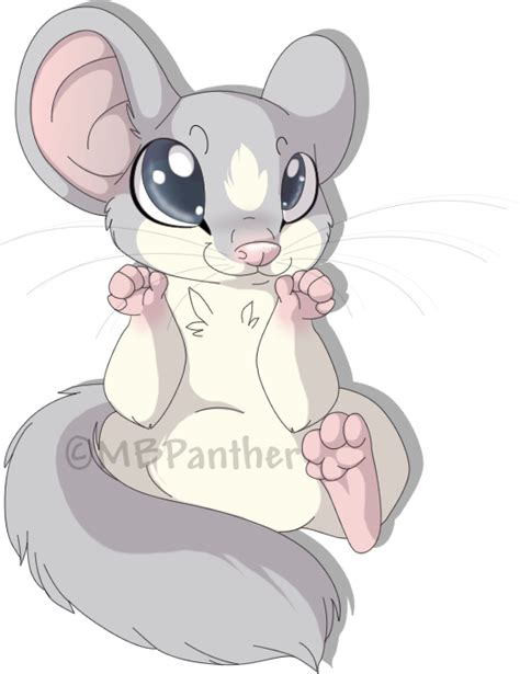 In Dormouse Drawing by Daschel The Dormouse By Mbpanther On Deviantart