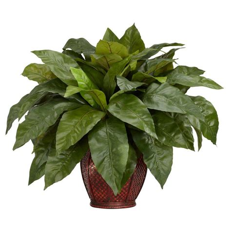 silk plants nearly natural 23 in h green birdsnest fern with