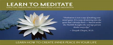 learn to meditate news events barbara dobson