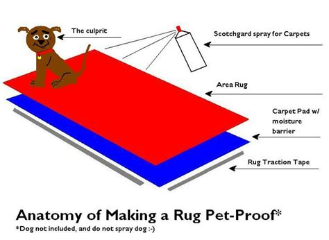 Pet Proof Rugs by 9 Best Images About Pet Proof Rugs On Carpets