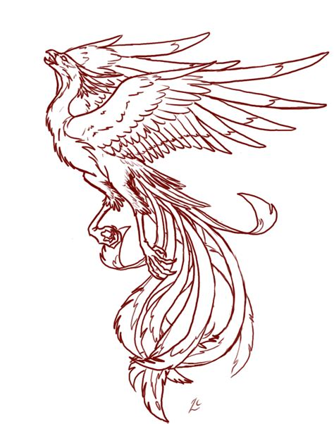 phoenix tattoo no outline phoenix tattoo limited use by deathcomes4u on deviantart