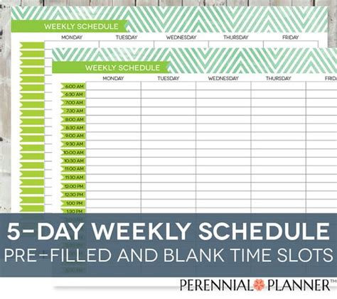 free printable weekly planner with time slots daily schedule printable editable times half hourly