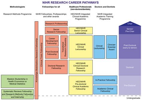 career pathways diagram programmes managed by trainees coordinating centre