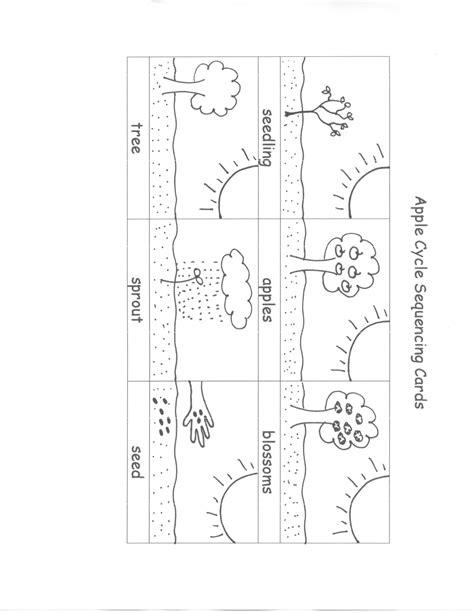 Cycle Of A Worksheet by 11 Best Images Of Kindergarten Apple Cycle Worksheet