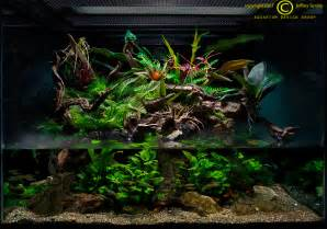 Aquascape Gallery Paludarium On Pinterest Vivarium Aquascaping And Aquarium