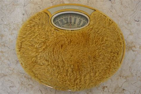 bathroom scales carpet shag rug bathroom scale remember this pinterest