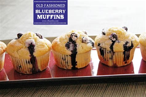 free printable muffin recipes best blueberry muffin recipe ever and a free printable