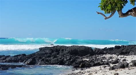 top 28 not shabby kailua kona hi photos for not too shabby hawaii yelp top 28 not shabby