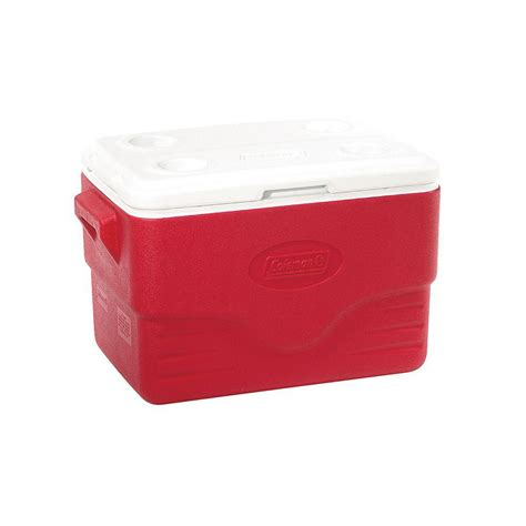 Coleman Cooler Shelf by Coleman 36 Qt Cooler With 4 Built In Cup Holders