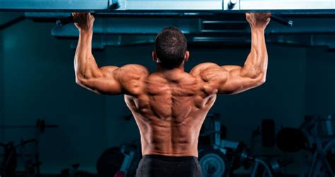 the best body building shoo 10 best bodyweight exercises for building muscle