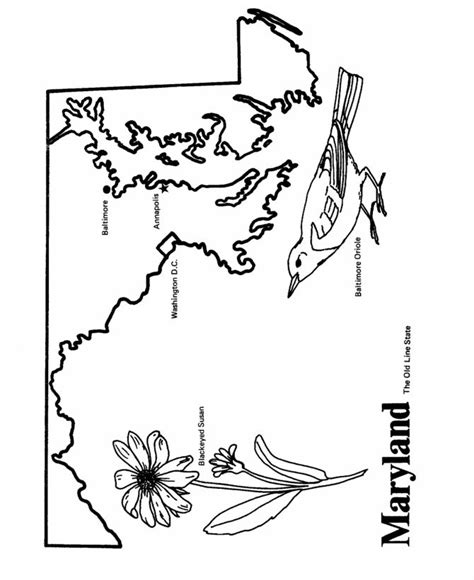 Maryland Coloring Page Coloring Home Maryland Coloring Pages