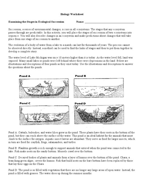 Succession Worksheet Answers by Ecology Worksheets For High School Lesupercoin Printables