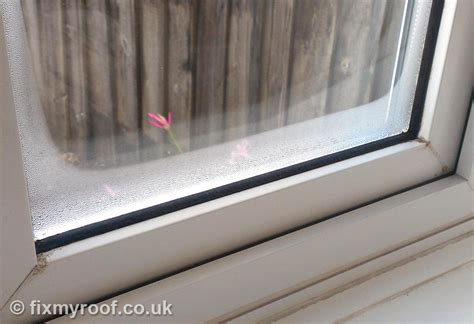 condensation on bedroom windows condensation on bedroom windows how to cure condensation