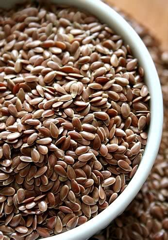 pictures 0f vegetables image gallery linseed seeds