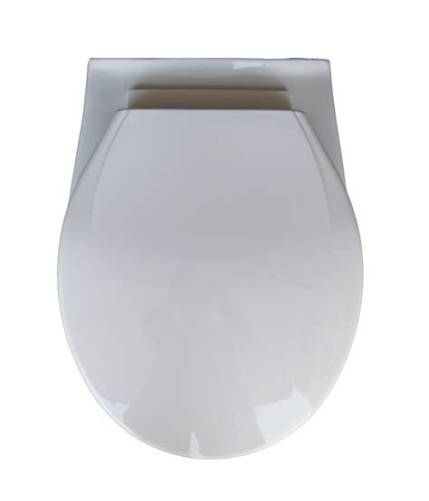 Wall Hung Water Closet by Buy Belmonte Wall Hung Water Closet Mini With Soft