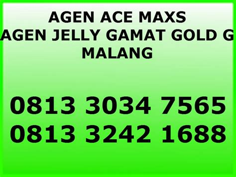 Ace Max Dan Jelly Gamat obat herbal ace maxs dan jelly gamat the knownledge