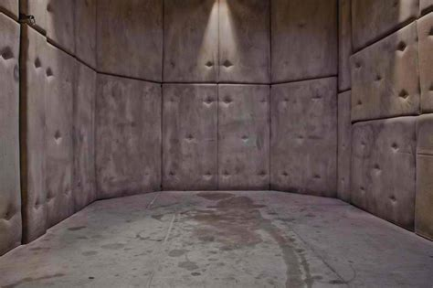 padded room the gimp room the padded cell the office inside the world of features