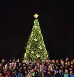 lighting of the tree national tree united states