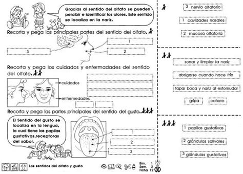 fichas de practicas del ficha imprimible de repaso para 4to grado de educaci 243 n