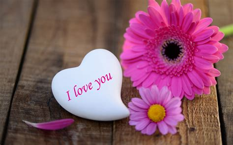 wallpaper flower i love you i love you wallpapers pictures images