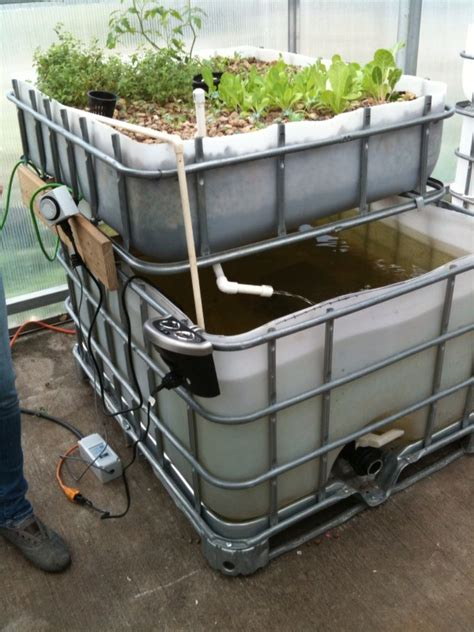 single ibc tote unit urban fish farmer