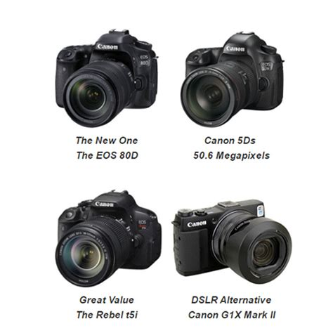 best canon dslr 5 best canon dslr choices updated for 2017