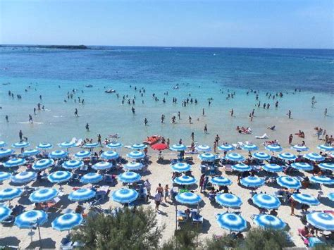 hotel in porto cesareo 301 moved permanently