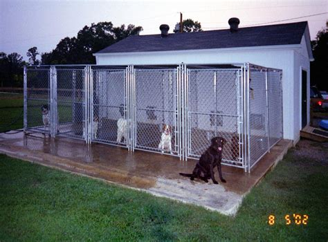 comfort hill kennels stunning indoor outdoor dog kennel pictures interior