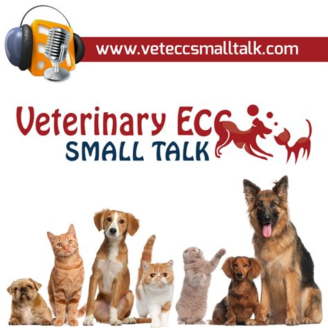 Veterinary Giveaways - veterinary ecc small talk